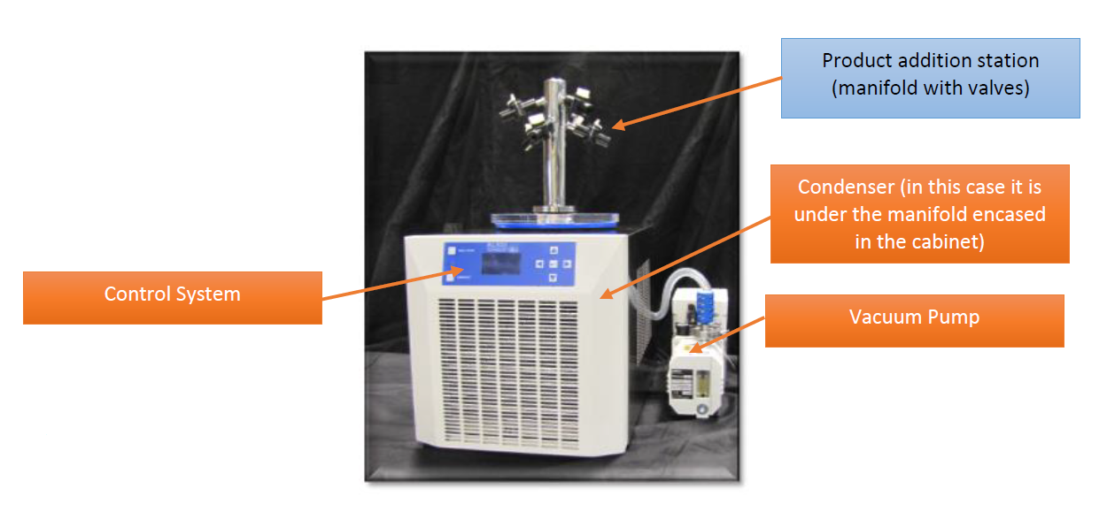 manifold freeze dryer