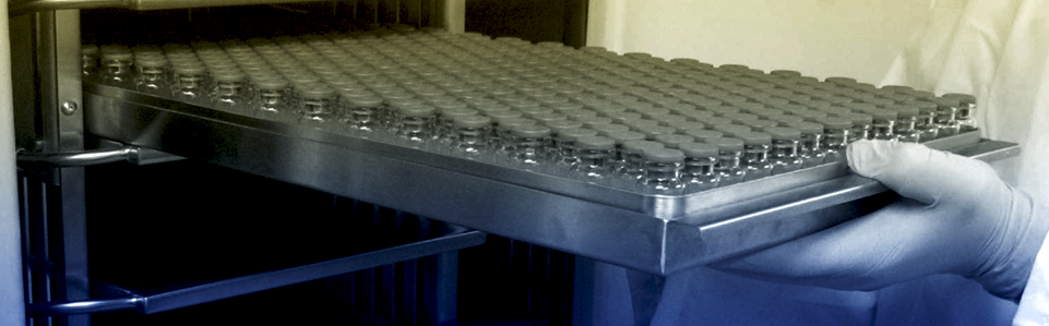 Vials in a tray for loading in a freeze dryer