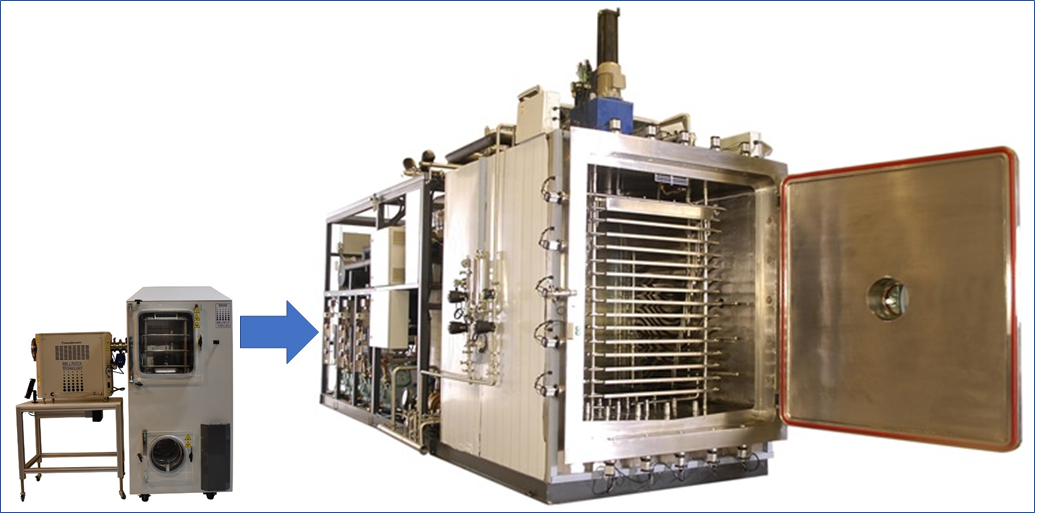Transfer freeze drying cycles from LyoPro to production dryers